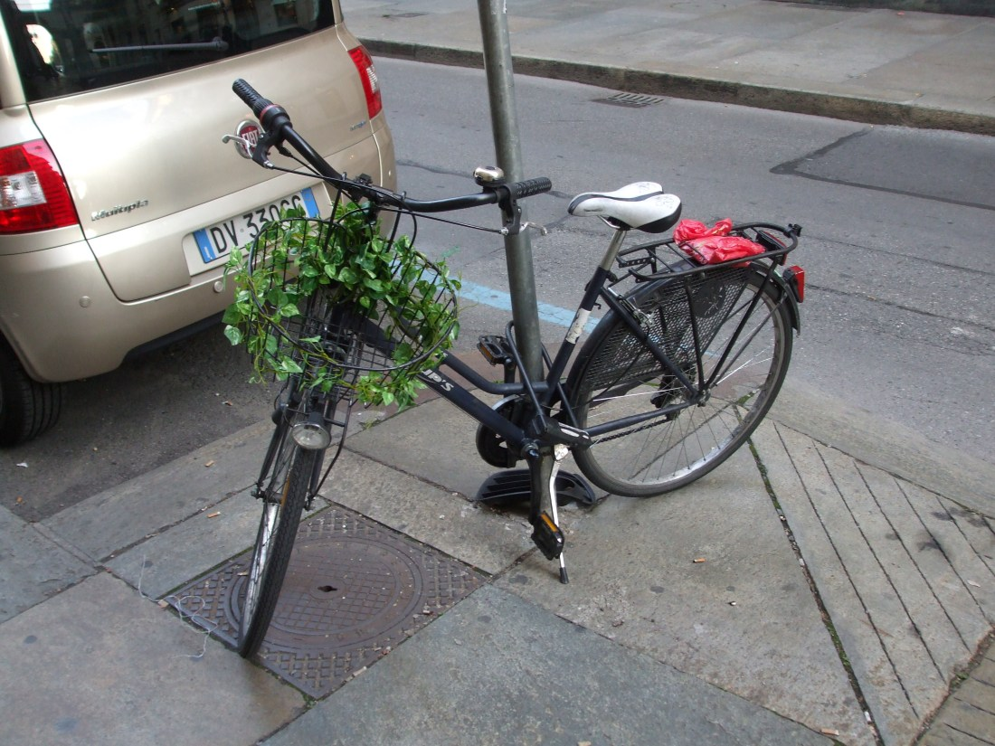 Turin Bycicle
